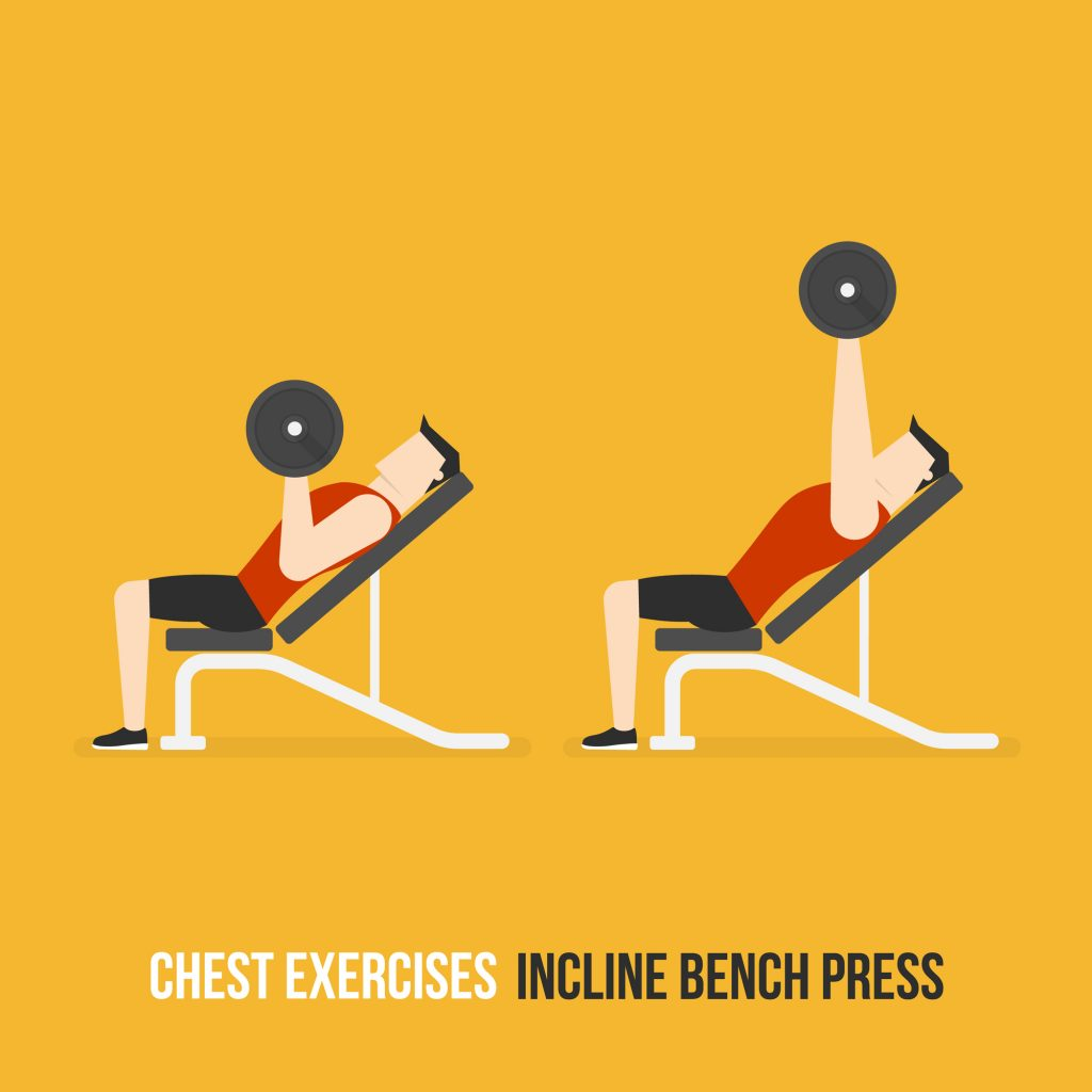 Chest Exercises. Incline Bench Press. Flat Design Bodybuilder Character Lifting Dumbbell.